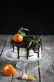 Gingerbread chocolate cake with tangerines and cream filling Stock Photography