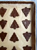 Gingerbread Christmas cookie dough in tree shapes on baking sheet Stock Photography