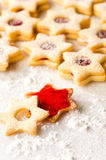 Gingerbread christmas cookie star powdered sugar Royalty Free Stock Images