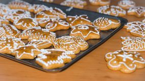 Gingerbread Christmas cookies. Freshly baked homemade gingerbread cookies Stock Photos