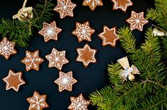 Gingerbread christmas cookies stars and snowflakes with green branch on black background Royalty Free Stock Photography
