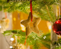 Gingerbread christmas decorations. Crunchy gingerbread cookie on christmas tree twig Stock Images