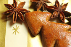 Gingerbread Christmas tree with aniseed Stock Photos