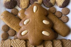Gingerbread Christmas tree and an assortment of Christmas cookies stock photo