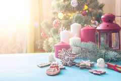 Gingerbread Christmas tree on blue table over christmas tree.  Stock Photos