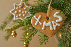 Gingerbread on a Christmas tree. Closeup view Stock Photos