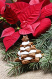 Gingerbread christmas tree. Delicious xmas dessert Stock Images
