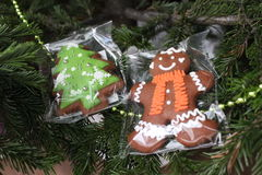 Gingerbread and Christmas tree. New Stock Photos
