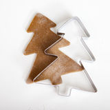 Gingerbread cookie. Woman holding a homemade Gingerbread cookie with a shape of a Christmas tree royalty free stock photo