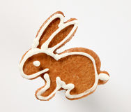 Gingerbread cookie. In the shape of a rabbit stock images