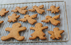 Gingerbread Cookie on a baking sheet Royalty Free Stock Images