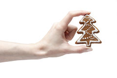 Gingerbread cookie in beautiful hand royalty free stock photos