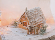 Gingerbread cookie and decorations Stock Image