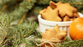 Gingerbread Cookie. Delicious tangerine. Fir branch. NewYear. Sm. All stars royalty free stock photo