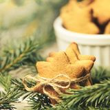 Gingerbread Cookie. Small stars. Fir branch. New Year stock photo