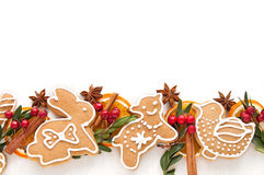 Gingerbread cookie and spice Royalty Free Stock Image