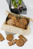 Gingerbread cookies in the box. Royalty Free Stock Photo