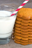 Gingerbread cookies with a glass of milk Royalty Free Stock Photo