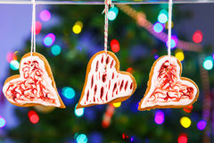 Gingerbread cookies hanging with Christmas tree on background. Stock Image