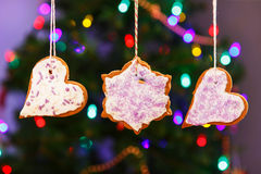 Gingerbread cookies hanging with Christmas tree on background. Royalty Free Stock Image