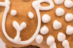 Gingerbread cookies macro. Gingerbread cookies   on white Royalty Free Stock Photos