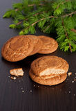 Gingerbread cookies and spruce branches on a black background. Close up, vertical Stock Photos