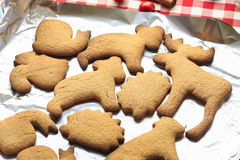 Gingerbread cookies straight from an oven Stock Images