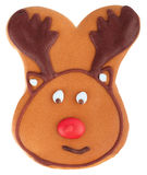 Gingerbread deer cookie isolated on white royalty free stock photos