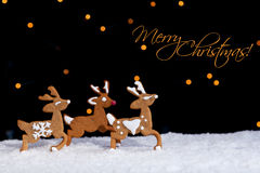 Gingerbread deers running through starry night Stock Photography