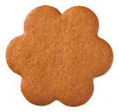 Gingerbread Flower Cookie Royalty Free Stock Photography