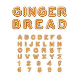 Gingerbread font. Christmas cookie Alphabet . Mint Cookies ABC. Royalty Free Stock Image