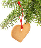 Gingerbread heart. Hanging under fir branch and isolated against white background Royalty Free Stock Image
