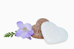 Gingerbread Hearts And Freesia Flower Stock Image