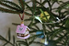 Gingerbread house close-up hanging on christmas tree. a living Christmas tree stock images