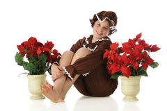 Gingerbread Kid Among Poinsettias Stock Image