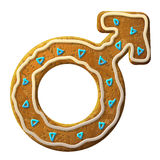 Gingerbread male symbol decorated colored icing. Holiday cookie in shape of man sign. Qualitative vector (EPS-10) illustration about man biology and health, male Stock Images