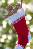 Gingerbread Man In Christmas Stocking Royalty Free Stock Photos