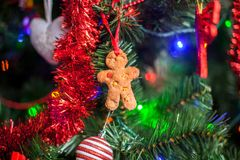 Gingerbread man in the christmas tree Royalty Free Stock Image