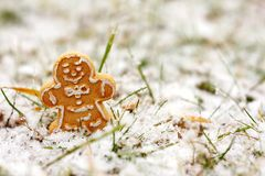 Gingerbread Man Cookie Standing Outside in Snow Stock Photos