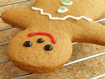 Gingerbread man cooling royalty free stock photo
