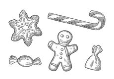 Gingerbread man and star. Gingerbread man, star, candy cane. Isolated on white background. Vector vintage black engraving illustration royalty free illustration