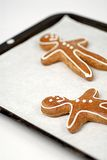 Gingerbread men. Two gingerbread men on a baking tray royalty free stock photos