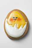 Gingerbread with painted chicken isolated on white background. Tasty biscuit with a painted chicken in egg on white background Stock Image