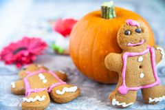 Gingerbread and pumpkin composition royalty free stock photography