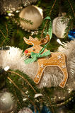 Gingerbread Rudolph decoration Stock Image