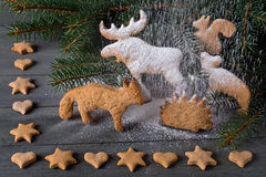 Gingerbread in the shape of animals, stars and hearts. In the background of twigs Christmas trees. Stock Photo
