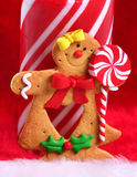 Gingerbread Smile Stock Image