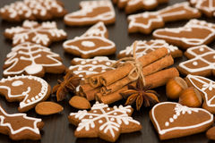 Gingerbread with spices Stock Photography