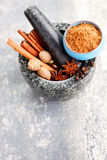 Gingerbread spices Royalty Free Stock Photos