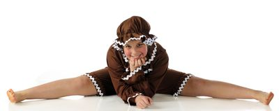 Gingerbread Splits Royalty Free Stock Photos